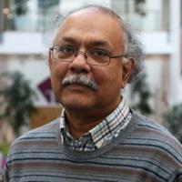 Professor Anindya Banerjee
